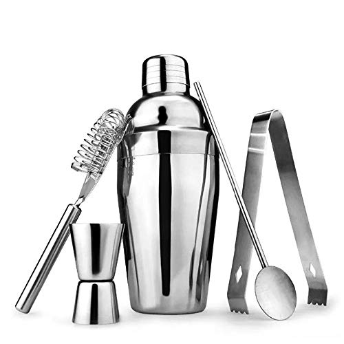 Edelstahl-Cocktail Shaker Set-5 Piece Bartender Kit mit Martini Shaker Strainer Jigger Shot Glass Stirn-Spoon Gifts Set-Silber Shot Glass Jigger