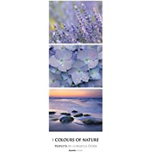 Colours of Nature 2017 - Triples - Streifenkalender XXL (25 x 70) - by Cornelia Dörr - Naturkalender