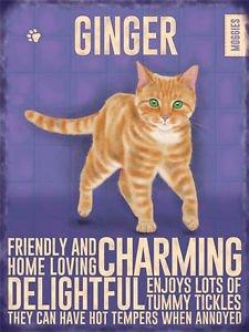 ginger-cat-cartello-in-metallo