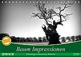 Baum Impressionen (Tischkalender 2020 DIN A5 quer): Unterwegs in deutschen Wäldern (Monatskalender, 14 Seiten ) (CALVENDO Natur) -
