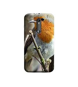 EPICCASE Premium Printed Back Case Cover With Full protection For Motorola Moto G3 (Designer Case)