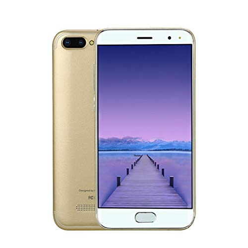 Smartphone, Jamicy 5,0 Zoll Doppel-SIM Smartphone Android 6.0 Full Screen GSM/WCDMA-Touchscreen WiFi Bluetooth GPS 3G Anruf-Handy (Gold)