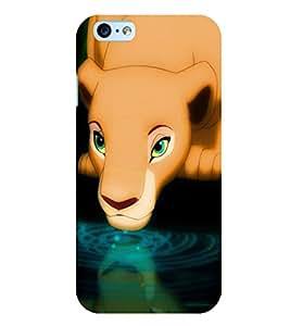 Citydreamz Lion\Wild\Animal\Jungle Hard Polycarbonate Designer Back Case Cover For Gionee S6