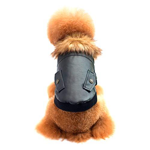 Selling PET-Kleidung, Baumwolljacke, Teddy Bären-Kostüm, Herbst Und Winter, Weinrot Schwarz,Black,L