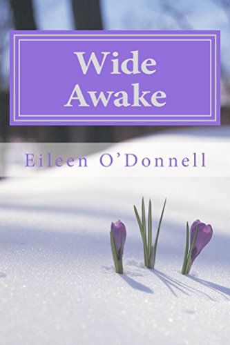 Wide Awake: : The Enlightened Mind in the World (English Edition)
