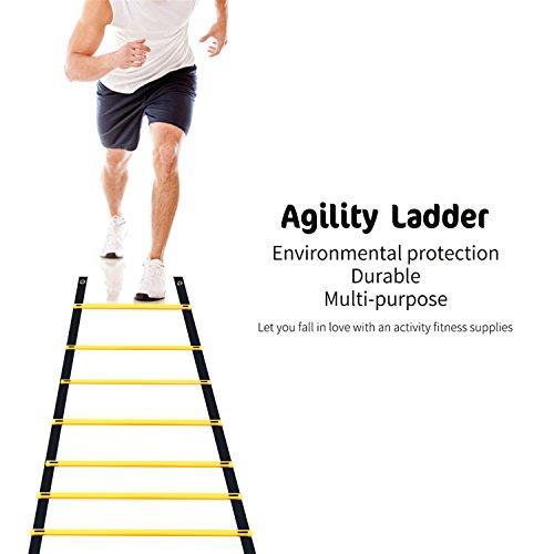 Homgrace Koordinationsleiter Trainingsleiter Fußball Fitness Geschwindigkeit Beweglichkeit Training Leiter mit Tasche, 6M 12 Rung