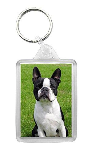 Something Special Gift Shop Schlüsselanhänger Boston Terrier mit Foto-Schlüsselanhänger, schöne Geschenkidee