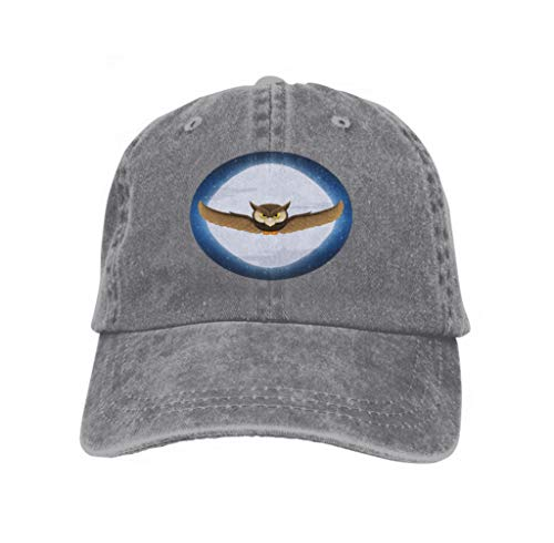 Hat for Boys Girls owl Flying Full Moon Star Space Halloween Holiday Text Hallo Gray ()