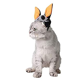 MRXUE Animal De Compagnie Chat Petit Chien Halloween Noël Chauve-Souris Chapeau Réglable Longueur Mode Lapin Chinchillas Can Être Utilisée