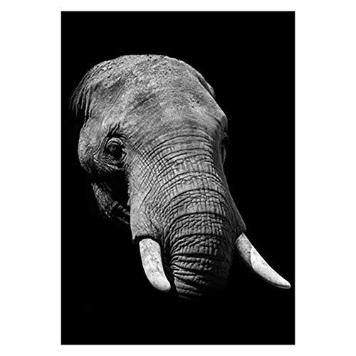 ndegdgswg Leopard Poster, schwarz und weiß Elefant Tiger Poster Kunst Wand Dekor Leinwand, Bild Wohnzimmer rahmenlose Wohnkultur 60 *90cm 3 -