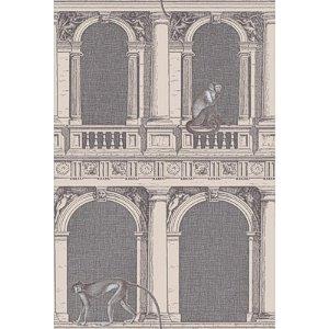 Cole U0026 Son Fils Piero Fornasetti II Collection Procuratie E Scimmie Papier  Peint 97/8022