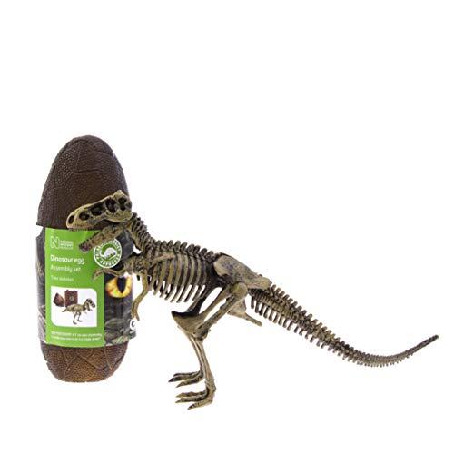 Storia Naturale Musuem Nhm-187T-Rex Dinosaur-Natural History Museum Uova Giocattolo di Fab distribuzioni, Multicolore