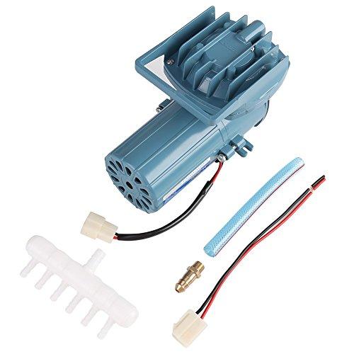 Elektrische Luftpumpe, DC 12V 35 Watt Luftpumpe Belüfter für Fischteich Aquakultur Aquarium Zubehör Werkzeug Luftkompressor Für Aquarium (Gebaut In 12vdc Pumpe)