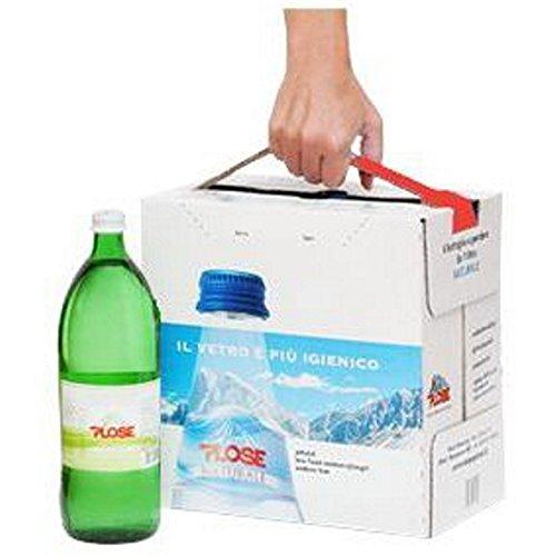 12 Bottiglie ACQUA PLOSE FRIZZANTE EASYBOX 1/1 VETRO A PERDERE
