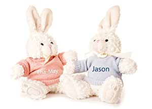 Hoolaroo Personalised Embroidered Bunny Rabbit Soft Toy with Jumper BLUE