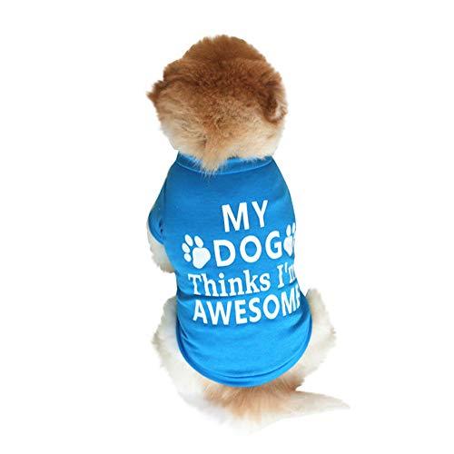 Smniao Hundebekleidung Baumwolle Haustier Kostüm Klein Hund My Dog Thinks I'm Awesome Weste für Chihuahua Welpen T-Shirt Kleid Rock (M, Blau)