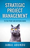 Strategic Project Management: To The Point And Nothing More (English Edition)
