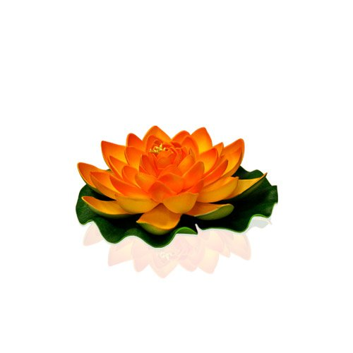 1028 Schwimmende Lotusblüte, naturfarben/Orange ()