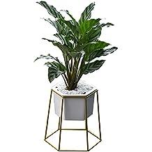 jarrón de jardinera de escritorio, maceta de cerámica moderna con soporte de metal contenedor geométrico de seis lados para maceta de cactus mini planta de aire suculenta por yunhigh