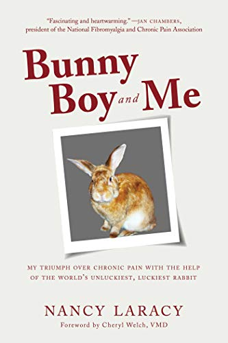 Bunny Boy and Me: My Triumph over Chronic Pain with the Help of the World's Unluckiest, Luckiest Rabbit (English Edition)