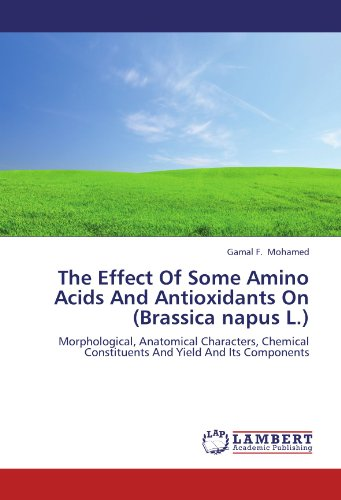Acid Antioxidant (The Effect Of Some Amino Acids And Antioxidants On (Brassica napus L.): Morphological, Anatomical Characters, Chemical Constituents And Yield And Its Components)