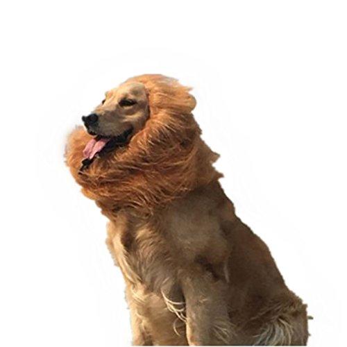Upxiang Löwenmähne für Hunde Löwe-Mähne für Hund, Halloween Cosplay Weihnachten Festival Party Kostüm mit Geschenk, Löwe-Perücke für Hund (Löwe-Perücke + Löwenschwanz) (B) (Besten Sein Und Ihre Halloween Kostüme)