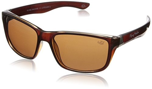 Flying Machine Wayfarer Sunglasses (Brown) (FMS-025|103)  available at amazon for Rs.514