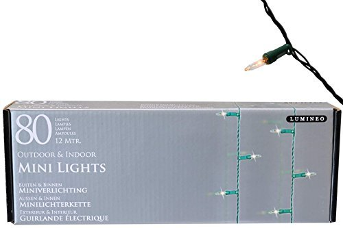 Christmas Lights Mini Holiday Lights 80lichter Clear/Green Outdoor