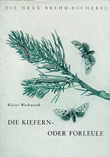 Die Kiefern- oder Forleule: Panolis flammea Schiff (Die Neue Brehm-Bücherei / Zoologische, botanische und paläontologische Monografien)
