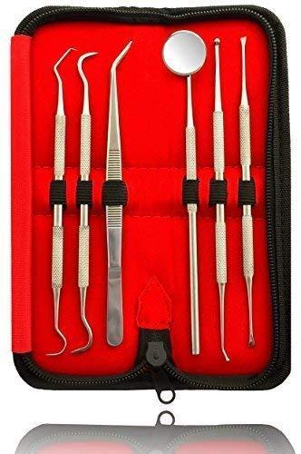 6er Dental Set Zahnsteinentferner professionelle Zahnreinigung Reinigung Zahnzwischenraum