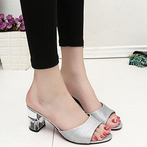 Bescita Frauen Mode Sommer Mid Heel Flip Flop Sandalen Slipper Böhmen Schuhe Silber