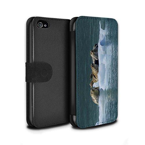 STUFF4 PU-Leder Hülle/Case/Tasche/Cover für Apple iPhone SE / Weißer Hai Muster / Marine Tierwelt Kollektion Seehund/Eis