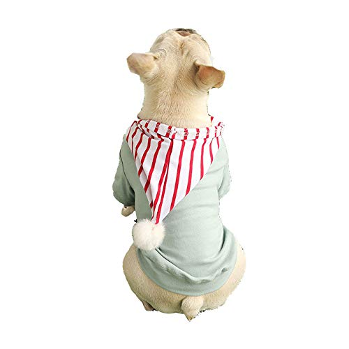 Grüne Bohnen Kostüm - OVCK PET CARE Hund Kostüm Herbst Winter Sweatshirt Jacke Mit Hut Kleiner Mittlerer Hund Hund Kleider Warm/Bohnen grün/Xl