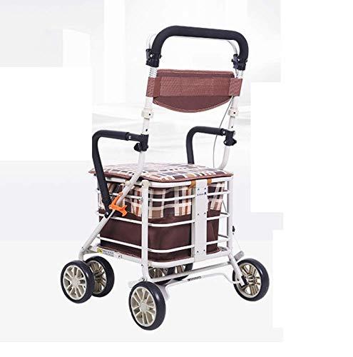 shopping cart Vieux Chariot Vieux Panier Scooter Walker