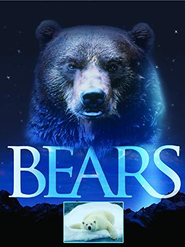 Bären (Bears)