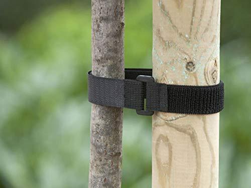 Nature 2 Bandeaux de tuteurage en Velcro 2,5cm x 40cm