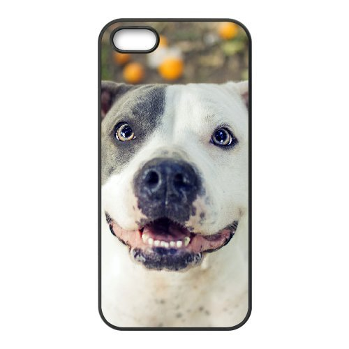 LP-LG Phone Case Of Pit Bull Terrier For iPhone 5,5S [Pattern-6] Pattern-3