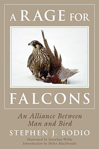 A Rage for Falcons: An Alliance Between Man and Bird (English Edition)