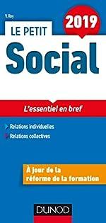 Le Petit Social 2019 - L'essentiel en bref de Véronique Roy