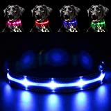 Pawow LED Leuchthalsband Hunde Leuchtend, Verstellbar USB Hunde Halsband Wiederaufladbar für Mittelgroße Grosse Hunde (Klein, Blau)