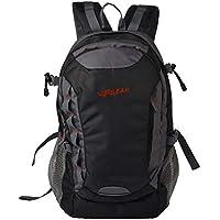 F Gear Fortune 27 Liters Laptop Backpack (Black, Grey)