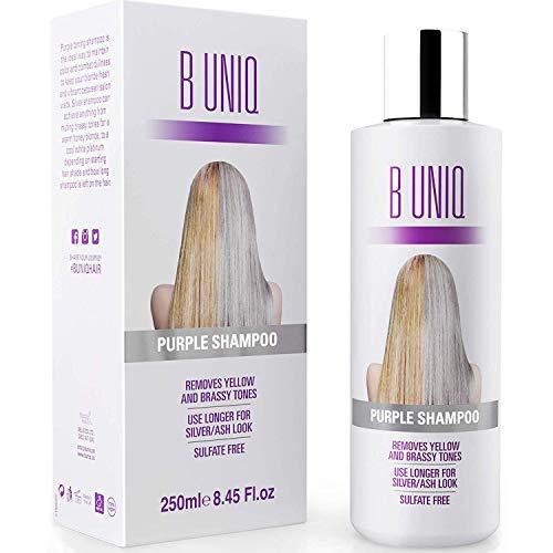 Silbershampoo - Anti-Gelbstich Purple Shampoo für blonde,