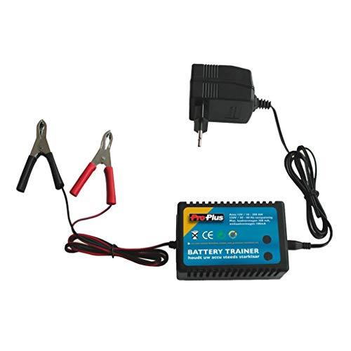 Batterietrainer für 12V Akkus