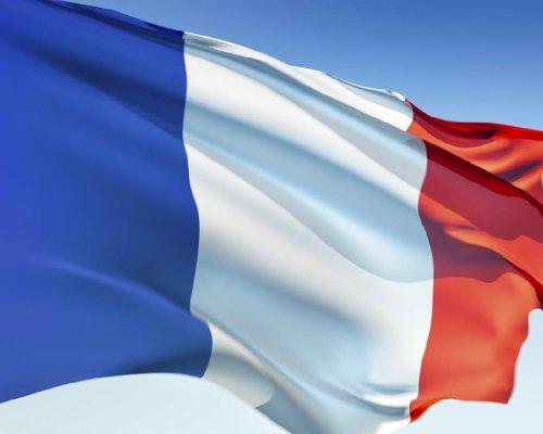 En ligne téléchargement gratuit Learn a Language:Basic French pdf