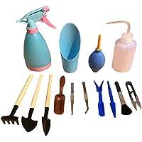 Star SSTO conjunto de herramientas de jardinería, 14 piezas, Mini-conjunto de herramientas de mano, madera purificada, herramientas para plantas suculentas, macetas, bonsáis
