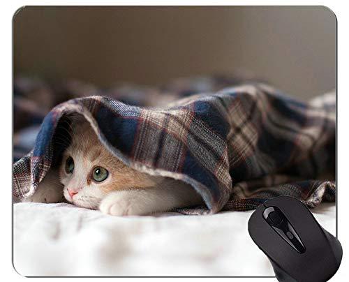 Mausunterlage mit genähtem Rand, Baby-Tierkätzchen-Haustier-Katze-Innenministerium-Computer-Zubehör ()