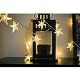 CLOOM Sea Star Lampe Romantische Lichterkette Glühbirnen Garten-kampierende Hängende LED Licht Lampen Birnen im Freien Kupfer Glühbirne Kronleuchter Garten Schlafzimmer Lampen Badezimmer Lampe (2M)