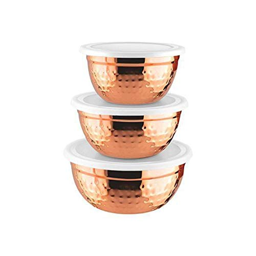 Shri and Sam Stainless Steel Air Tight Storage Container, 3-Pieces, Copper