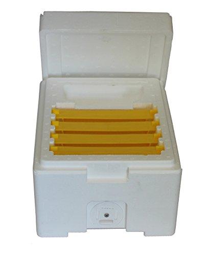 Kieler Begattungskasten mit 4 Kunststoffrahmen für die Königinnenzucht und herausnehmbarer Futterkammer