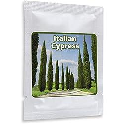 Säulenzypresse 100 Samen - Mittelmeer Zypresse - der Blickfang in jedem mediterran gestalteten Garten